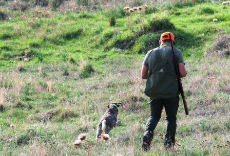 caccia in sicilia