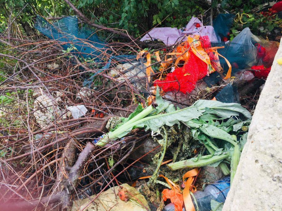rifiuti - mercato - mercoledì - contrada Selvaggio - Ragusa in Movimento - Ragusa