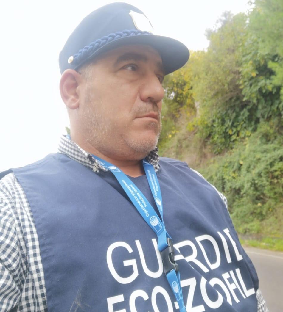Riccardo Zingaro