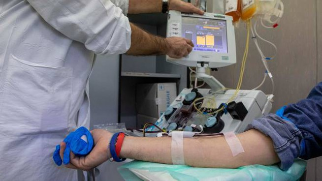 donazione plasma iperimmune