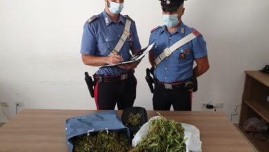 marijuana - minorenne