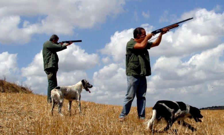 sicilia - caccia